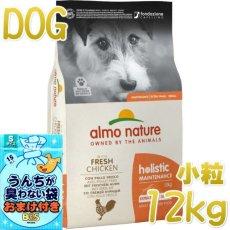画像1: 最短賞味2022.2・アルモネイチャー 犬 チキン 小粒12kg ald724成犬用ホリスティック ドッグフードalmo nature正規品 (1)