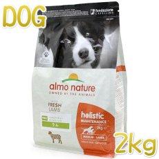 画像1: 最短賞味2021.1・アルモネイチャー 犬 ラム 中粒 2kg ald731成犬用ホリスティック ドッグフードalmo nature正規品 (1)