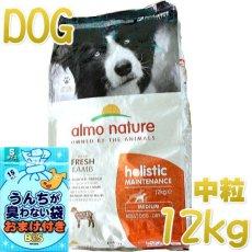 画像1: 最短賞味2022.6・アルモネイチャー 犬 ラム 中粒12kg ald741成犬用ホリスティック ドッグフードalmo nature正規品 (1)