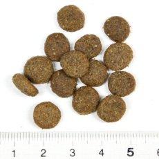 画像2: 最短賞味2021.1・アルモネイチャー 犬 サーモン 小粒 400g ald705 成犬用 ホリスティック ドッグフード 正規品 (2)