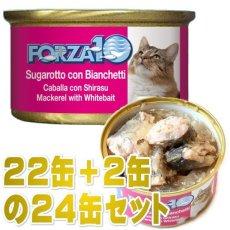 画像1: 最短賞味2022.2・フォルツァ10 猫 メンテナンス サバ&シラス 85g×24缶 ウェット キャットフード FORZA10正規品fo05609s24 (1)