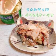 画像4: 最短賞味2022.2・フォルツァ10 猫用 メンテナンス イワシ&サーモン 85g缶 成猫用 シニア猫対応ウェット 一般食 FORZA10 正規品 (4)