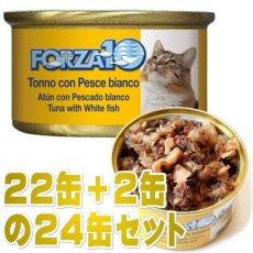 画像1: 最短賞味2022.2・フォルツァ10 猫 メンテナンス マグロ&白身魚 85g×24缶 ウェット キャットフード FORZA10正規品fo05678s24 (1)