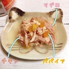 画像5: 最短賞味2022.9・プレミアム フォルツァ10 グルメ缶 マグロとチキンとパパイヤ 75g×24缶 成猫用ウェット 一般食 FORZA10正規品 (5)