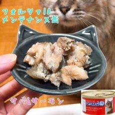画像4: 最短賞味2021.10・フォルツァ10 猫用 メンテナンス サバ&サーモン 85g缶 成猫用 シニア猫対応ウェット 一般食 FORZA10 正規品 (4)