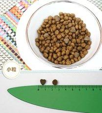 画像2: 最短賞味2021.10・フォルツァ10 猫 ウリナリー アクティブ454g 成猫用 尿路結石ケア対応キャットフード正規品fo07917 (2)