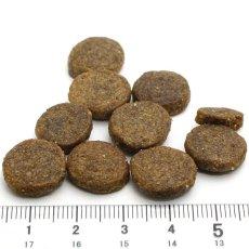 画像3: プレゼント付き!最短賞味2020.3・フォルツァ10 犬 デイリーフォルツァ パピーフィッシュ小粒 8kg ローグレイン 食物アレルギー対応 フォルツァディエチ FORZA10 正規品 fo70281 (3)