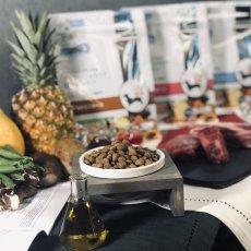 画像2: プレゼント付き!最短賞味2020.3・フォルツァ10 犬 デイリーフォルツァ ミニ ホース小粒 20kg ローグレイン 食物アレルギー対応 フォルツァディエチ FORZA10 正規品 fo70496 (2)
