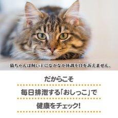 画像3: ヘルスインディケーター 200g 月に1度、愛猫の健康チェック! (3)