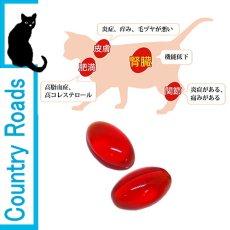 画像3: 最短賞味2021.11・クリルオイル 無臭タイプ 180粒 犬猫用 ナチュラルハーベスト カントリーロード nh08018 (3)
