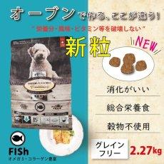 画像2: おやつ付き!最短賞味2020.8.3・オーブンベークド 犬 グレインフリー フィッシュ 小粒2.27kg 全年齢オーブンベイクド ドッグフード正規品obd98040 (2)
