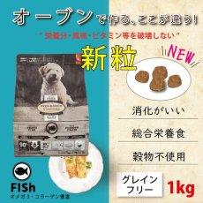 画像2: おやつ付き!最短賞味2020.7.31・オーブンベークド 犬 グレインフリー フィッシュ 小粒 1kg 全年齢 OVEN-BAKED 正規品obd98255 (2)