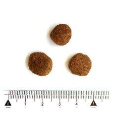 画像2: 最短賞味2022.8.15・ペットカインド 犬 グリーントライプ&ワイルドサーモン 230g 全年齢犬用トライプドライ 穀物不使用ドッグフードPetKind正規品pk03004 (2)