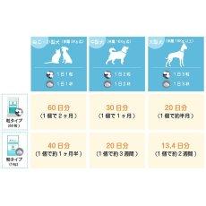 画像2: 最短賞味2023.7・プロバイオデンタルペット 粉末タイプ 14g 犬猫用 歯垢・口腔ケア口腔善玉菌ps60157 (2)