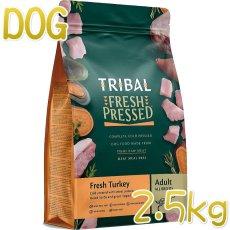 画像1: 最短賞味2022.4.6・トライバル フレッシュ ターキー 2.5kg 成犬用ドライ ドッグフードTRIBAL正規品tr11717 (1)