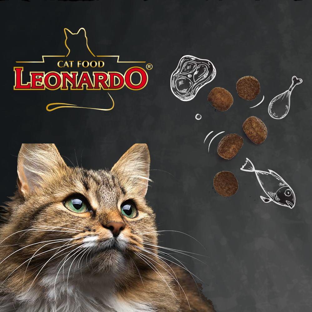 レオナルド