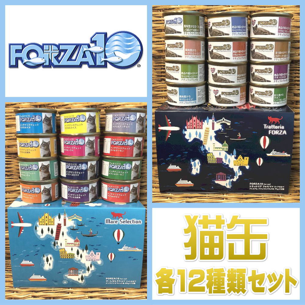 フォルツァ10猫缶セット