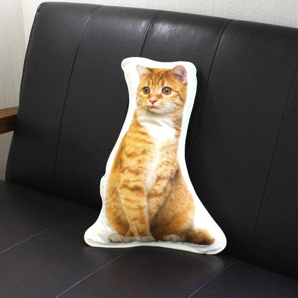 画像1: アンダロ ジンジャー キャット 猫柄クッション【リアルプリント・ポーランド製・ANDARO】 (1)