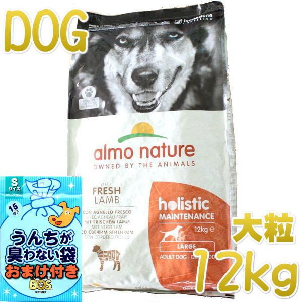 画像1: 最短賞味2022.9・アルモネイチャー 犬 ラム 大粒 12kg ald761成犬用ホリスティック ドッグフードalmo nature正規品 (1)