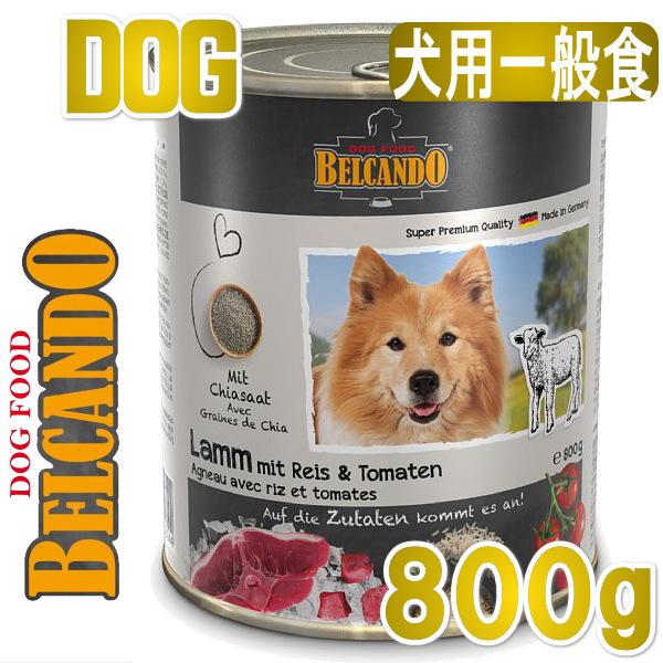 画像1: 最短賞味2022.12・ベルカンド ラム 米とトマト 800g缶 一般食 スーパープレミアム モイストフード ドイツ原産ドッグフード BELCANDO 正規品 bc13113 (1)