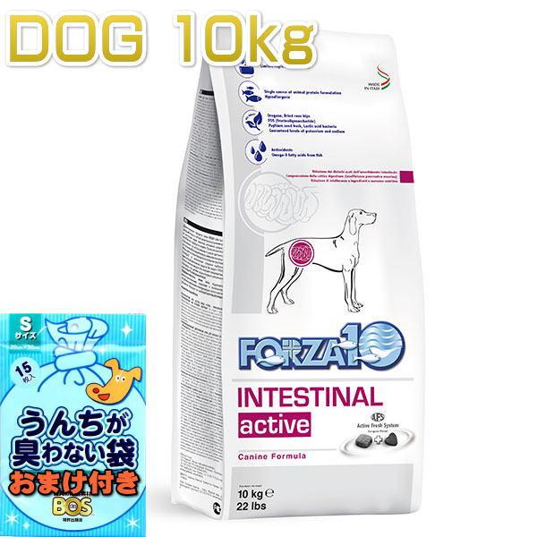 画像1: おまけ付き!最短賞味2021.11・フォルツァ10 犬 インテシティナル アクティブ 中粒 10kg大袋 胃腸ケア 成犬シニア犬ドッグフード FORZA10正規品fo00480 (1)