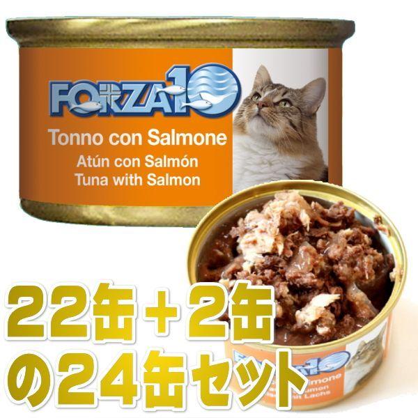画像1: 最短賞味2023.1・フォルツァ10 猫 メンテナンス マグロ&サーモン 85g×24缶 一般食ウェット キャットフードFORZA10正規品fo05654s24 (1)