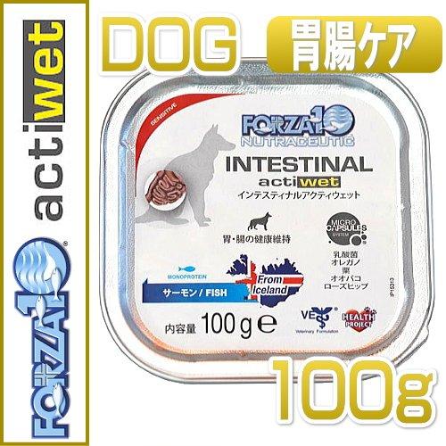 フォルツァ10 /インテシティナル アクティウェット100g