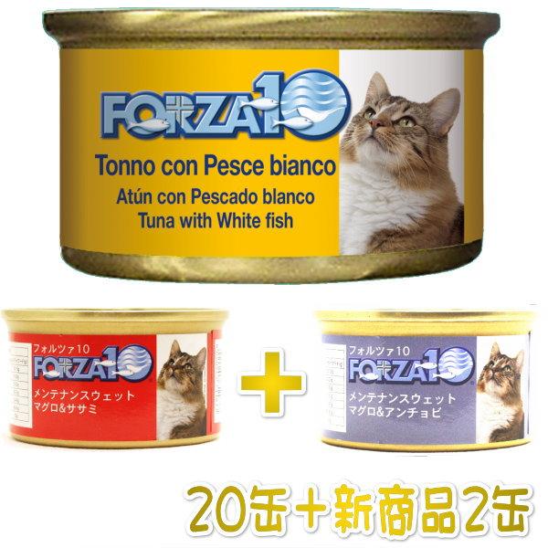 画像1: 最短賞味2022.2・新商品+2缶キャンペーン!フォルツァ10 猫用 マグロ&白身魚 85g 20缶+2缶 fo05678s20 (1)
