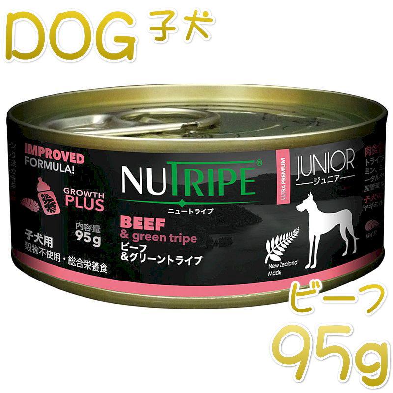 画像1: 最短賞味2023.5・ニュートライプ ジュニア ビーフ&グリーントライプ 95gウェット子犬用 総合栄養食 正規品 nud13750 (1)