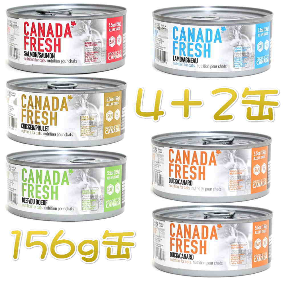 画像1: SALE 賞味切迫2020.8・ペットカインド カナダフレッシュ 156g×6缶(ダック×2サーモン×1チキン×1ラム×1ビーフ×1) pkc02993s (1)