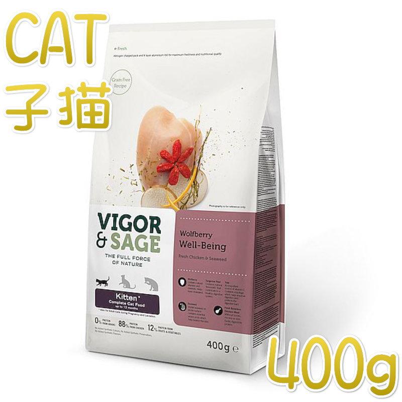 画像1: 最短賞味2021.11.11・ビゴー&セージ 子猫 ウルフベリー ウェルビーイング 400g仔猫用ドライVIGOR&SAGE正規品vs70189 (1)